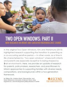 Two Open Windows II thumbnail